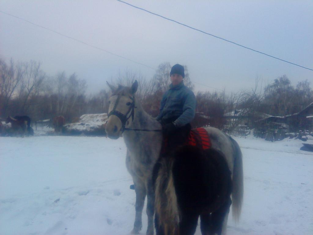 Соскучился я по лошадкам